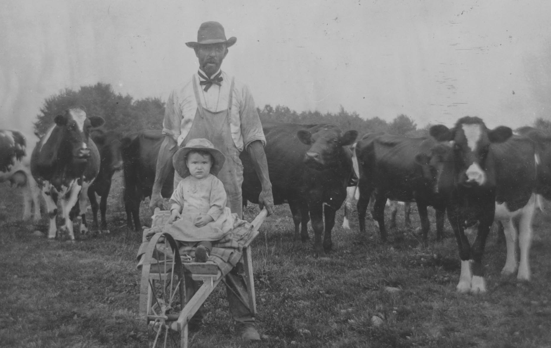 Farmer and daughter with cows