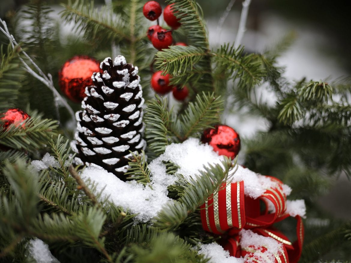 White Christmas Forecast For Some From Wyoming Through Maine   WSKG