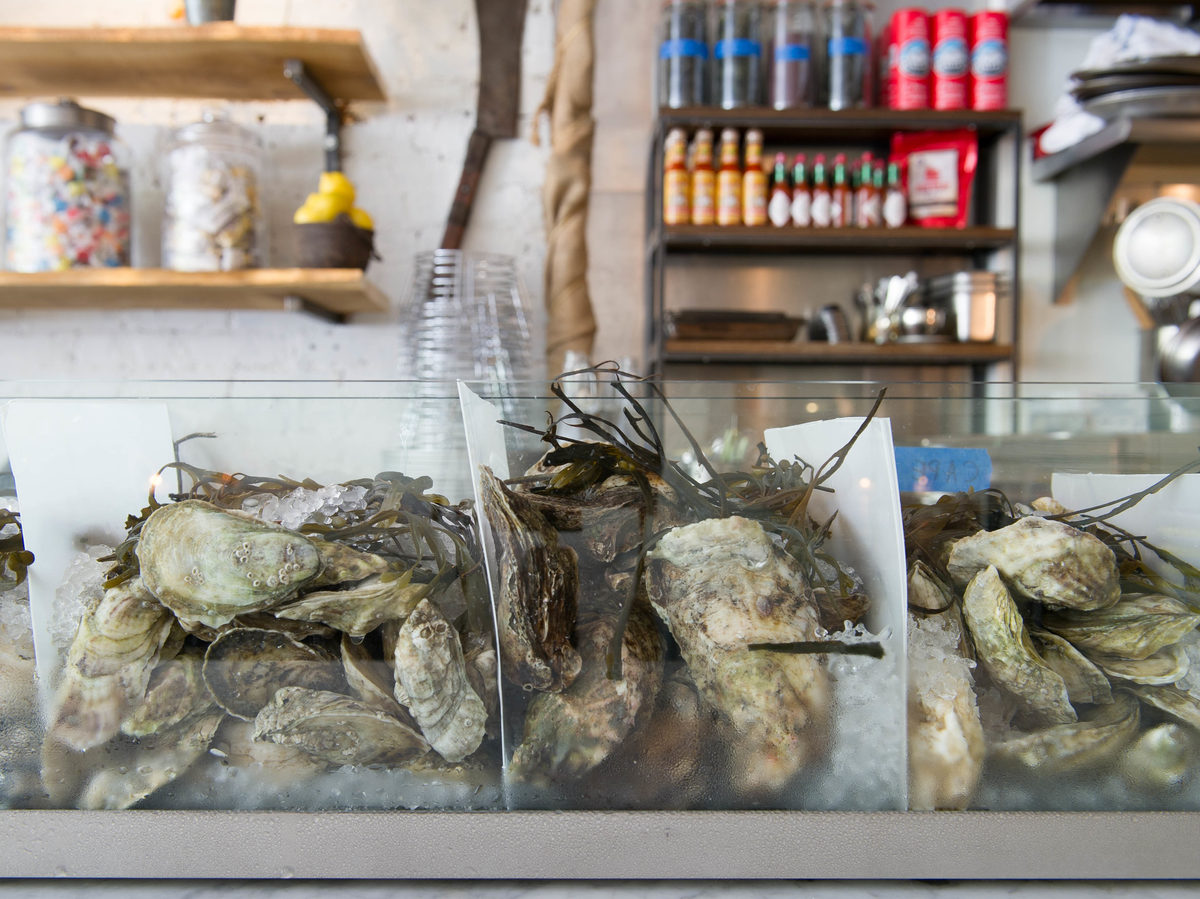 Oysters at Zadie's Oyster Room, one of the New York City restaurants participating in Billion Oyster Project's shell-collection program.