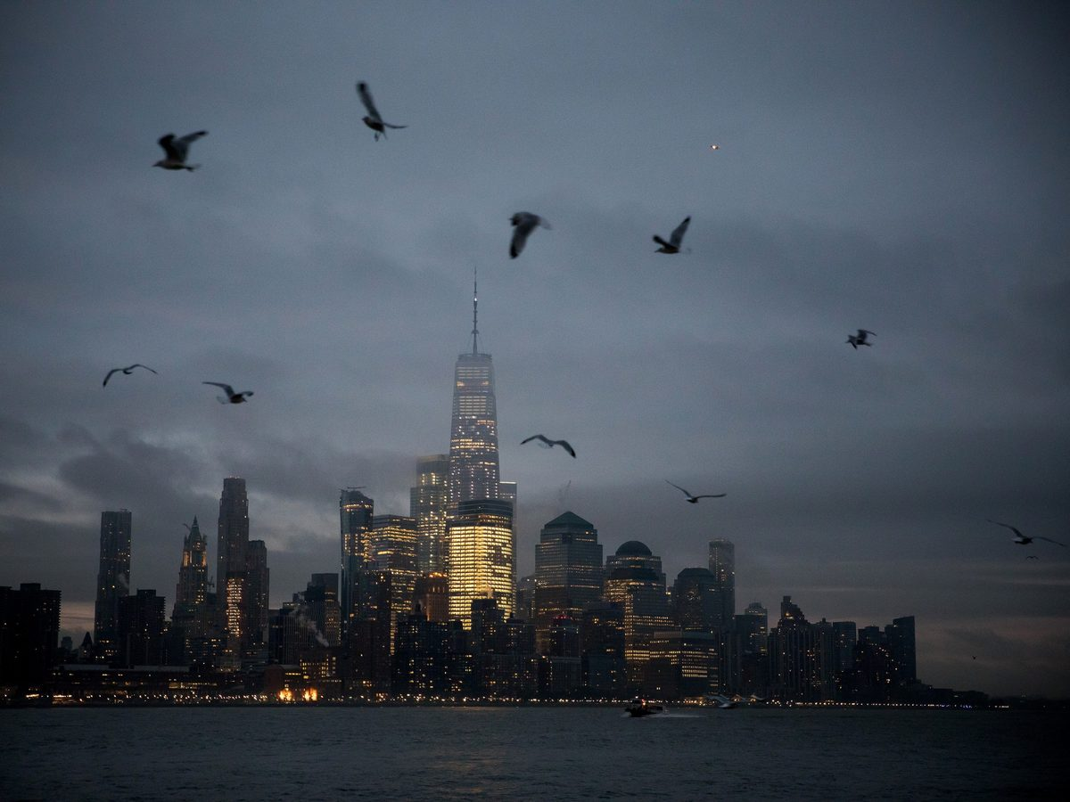 One World Trade Center (WTC) stands in the lower Manhattan skyline as birds fly over the Hudson River in Hoboken, New Jersey, on Feb. 8, 2019.