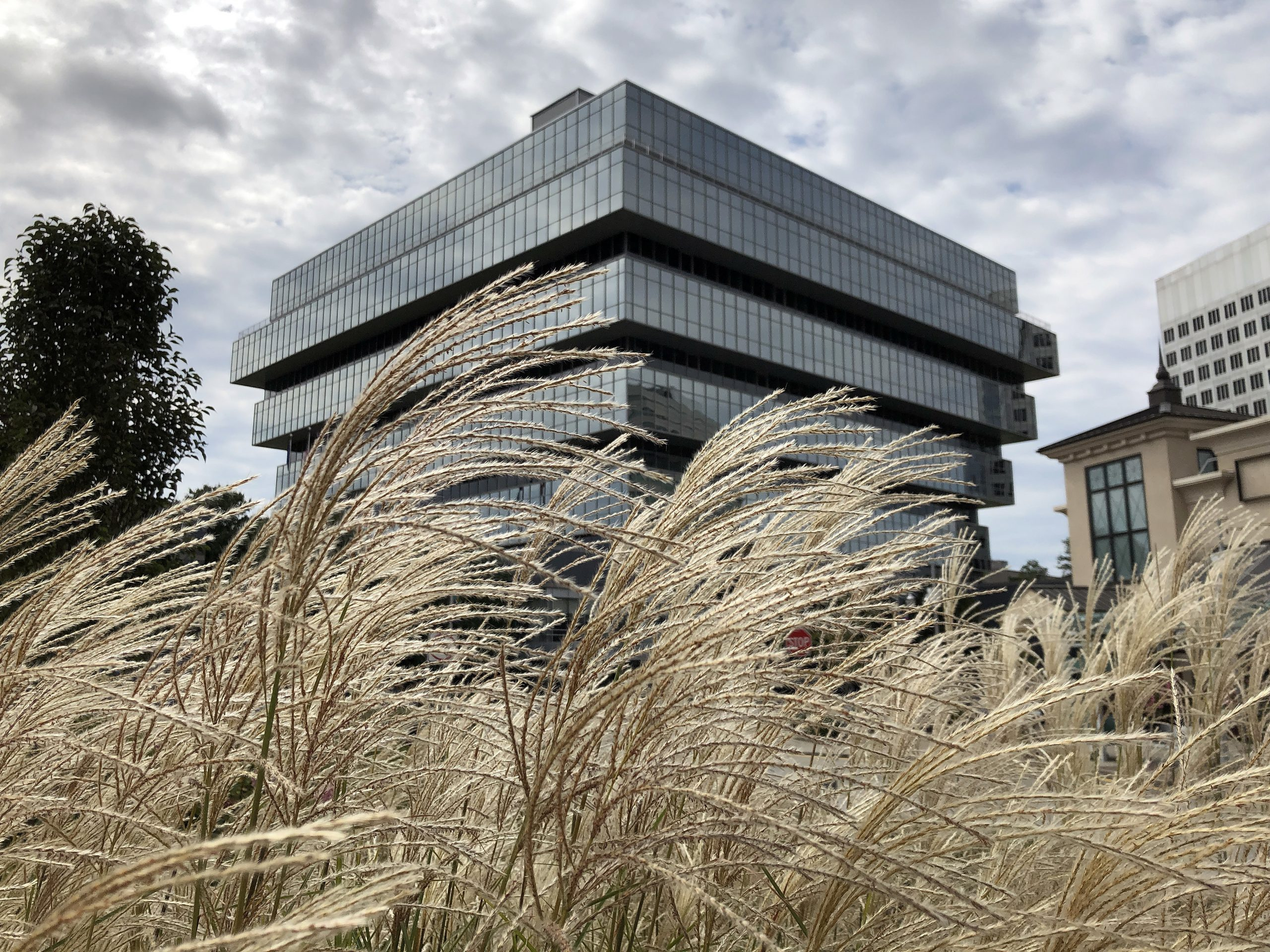 Purdue Pharma's headquarters in Stamford, Conn., seen earlier this month. The OxyContin manufacturer has filed for Chapter 11 bankruptcy, but some want the company's owners to face criminal charges over the opioid crisis.
