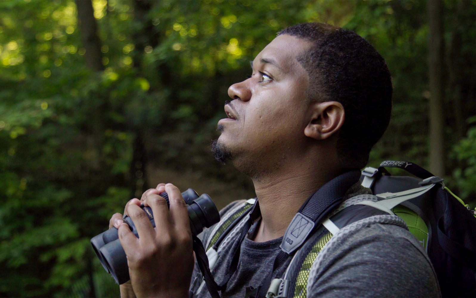 Birding While Black: Jason Ward On Central Park Video, Racism And His Passion For Birds